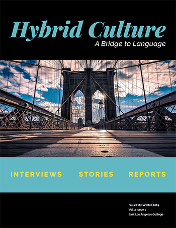 Thumbnail of Hybrid Culture A bridge to Language